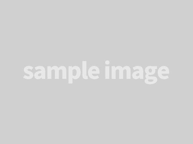ハードロックナット技術資料